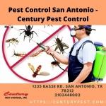Pest Control San Antonio - Century Pest Control